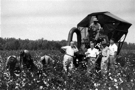Florida Memory - First mechanical cotton picker in the