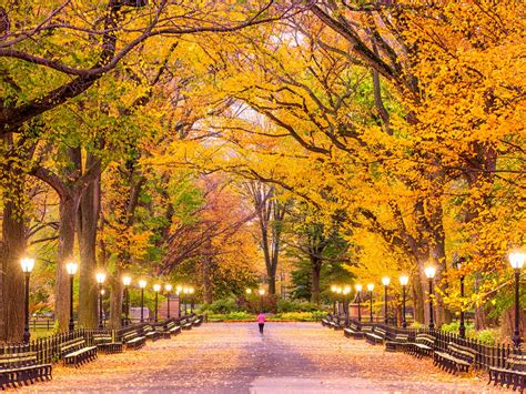 Fall colors 2019: Where to see fall foliage in New York
