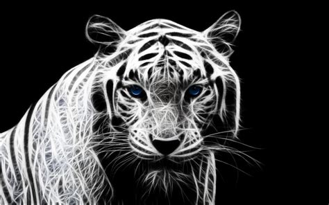 White Tiger Wallpaper For Android » Earthly Wallpaper 1080p